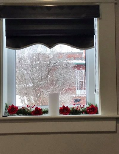 Window with Xmas flowers
